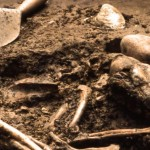 Image of a canine burial